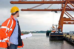 inspections and consulting expediting services